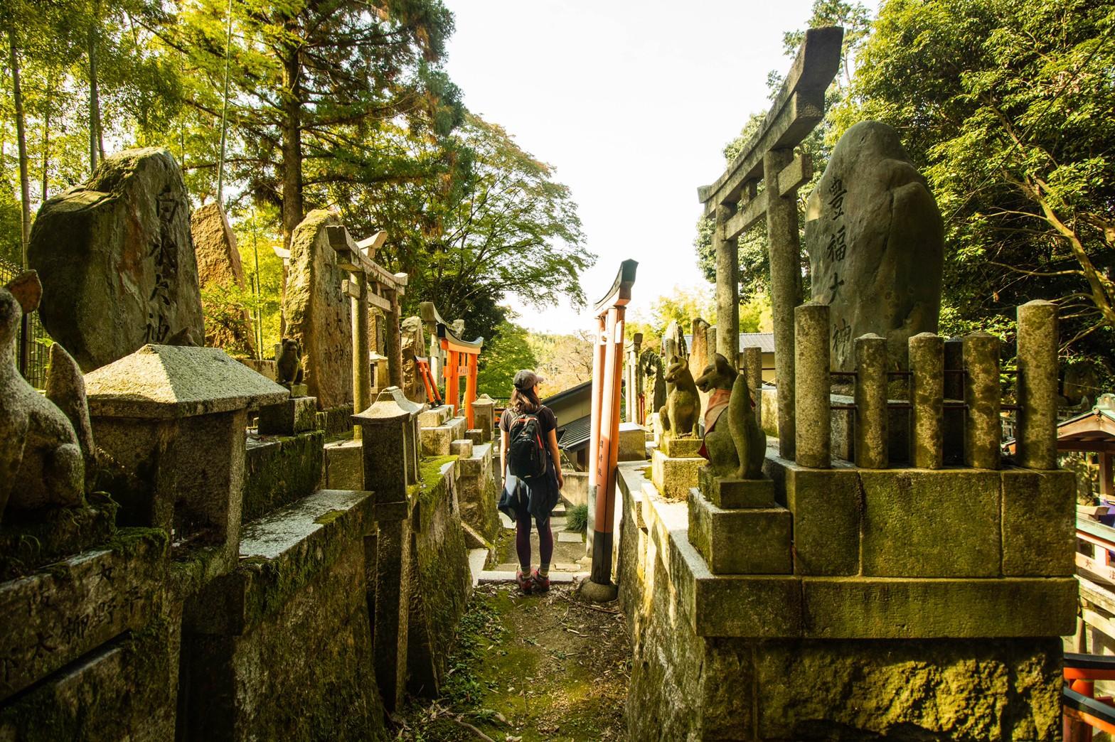 ぐるっと!京都一周トレイル®︎  ①伏見桃山〜伏見稲荷
